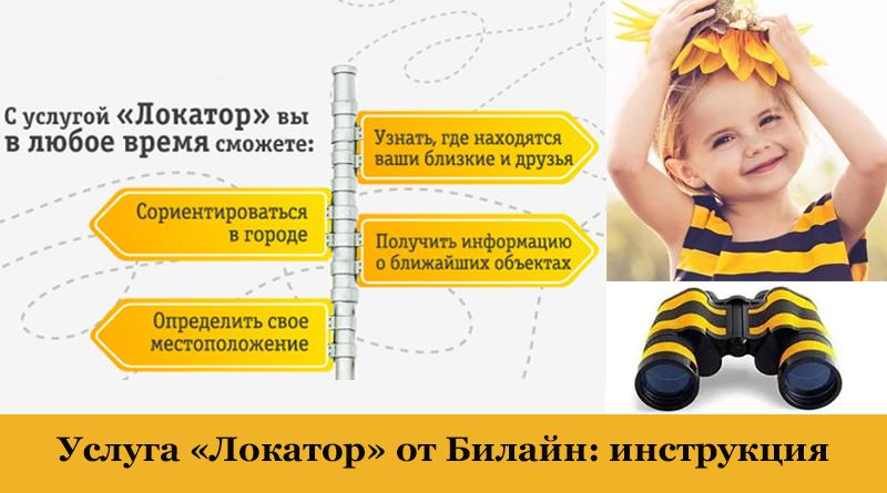 Информация об услуги